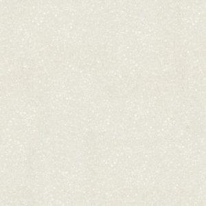503 Bianco Spizzio