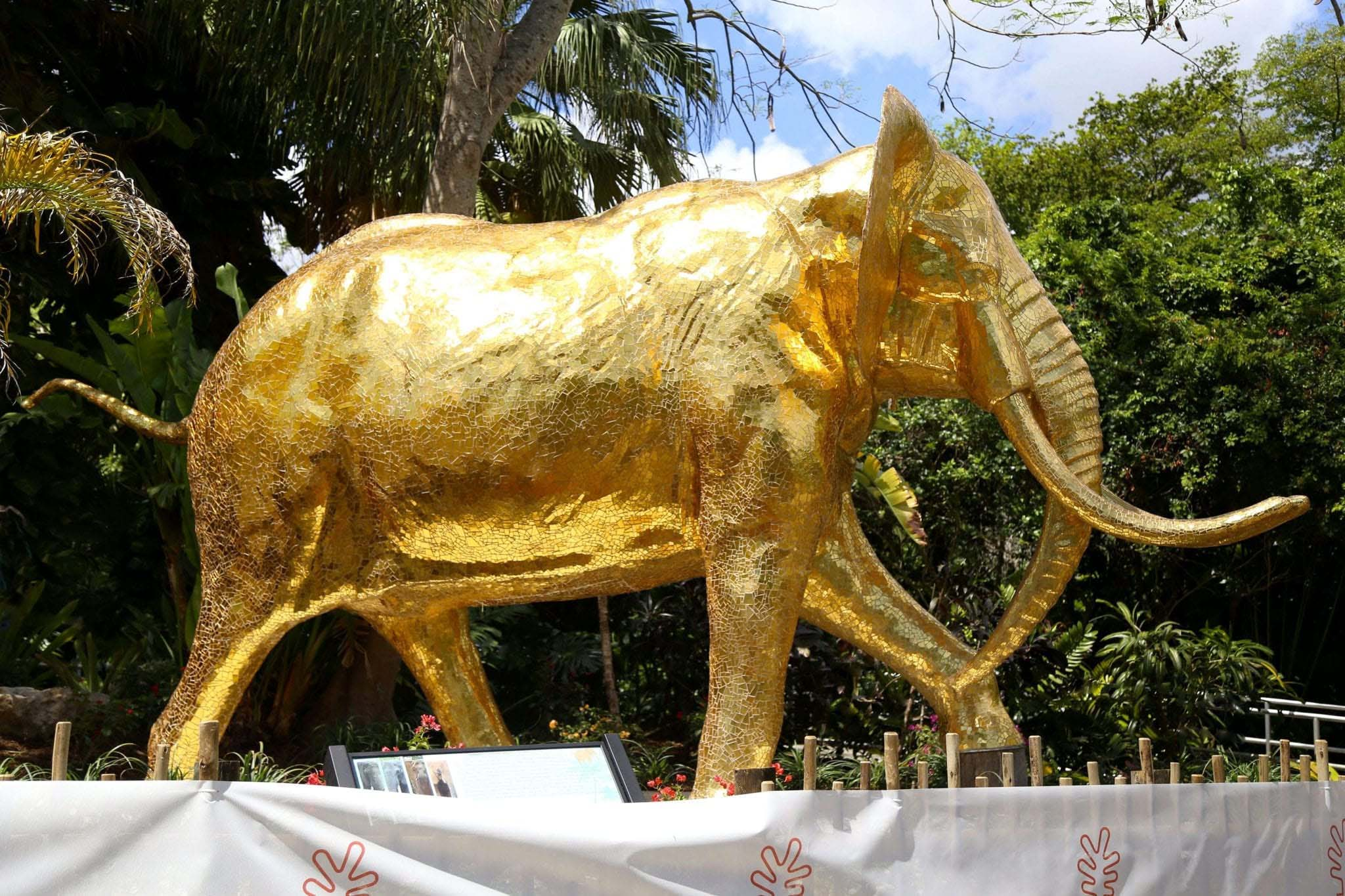 The Golden Elephant_Zoo Miami_Miami_USA