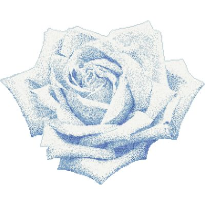 Decor Rosa Blu