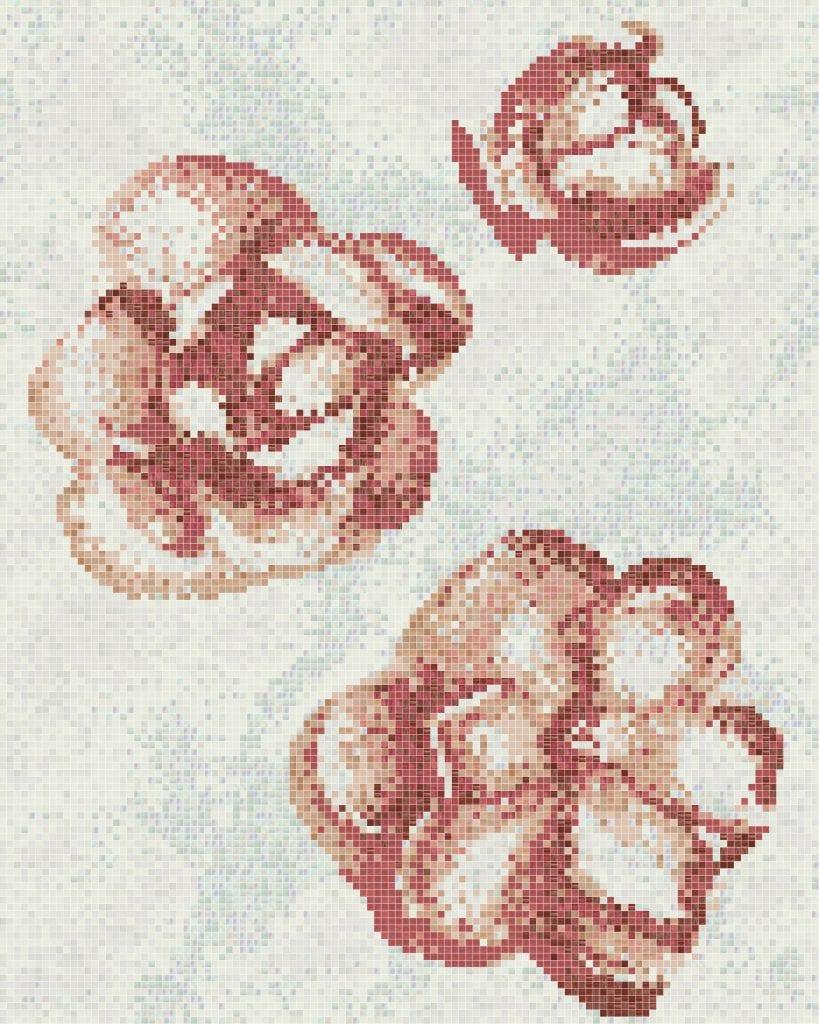 Gardenia Rosa