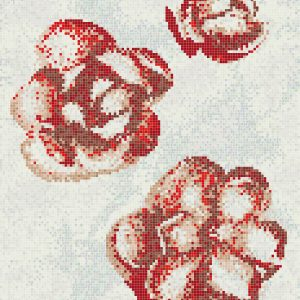 Gardenia Rossa