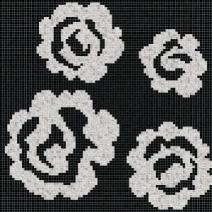 Rose Del Deserto D